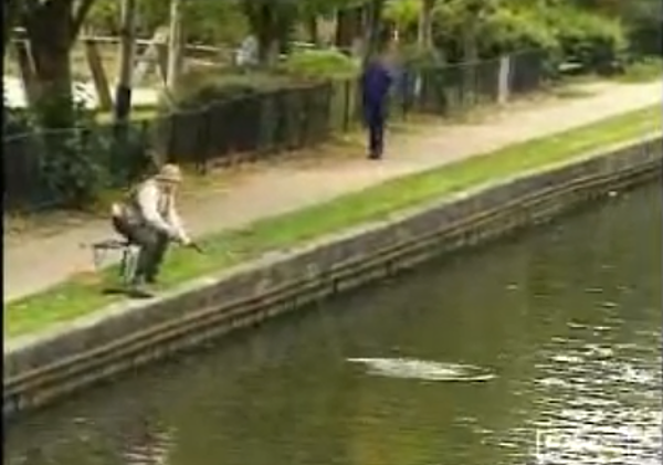 Here s a funny fish story big catch video for Funny fish pictures