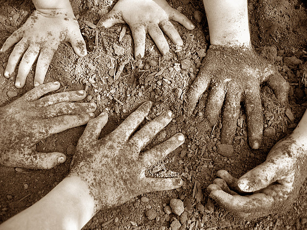 A range of young hands rummaging in dirt in brown tones